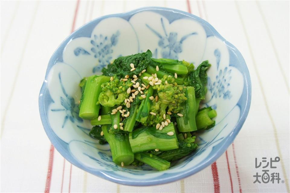 菜の花のからし和え(菜の花+いり白ごまを使ったレシピ)