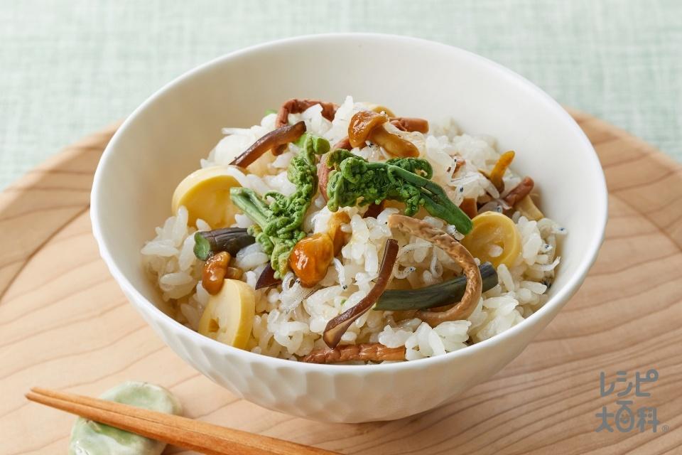 山菜の炊き込みご飯(米+姫たけのこの水煮を使ったレシピ)