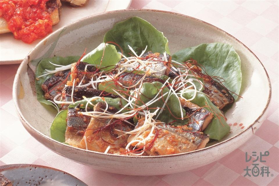 さんまのピリ辛煮(さんま+サラダ菜を使ったレシピ)