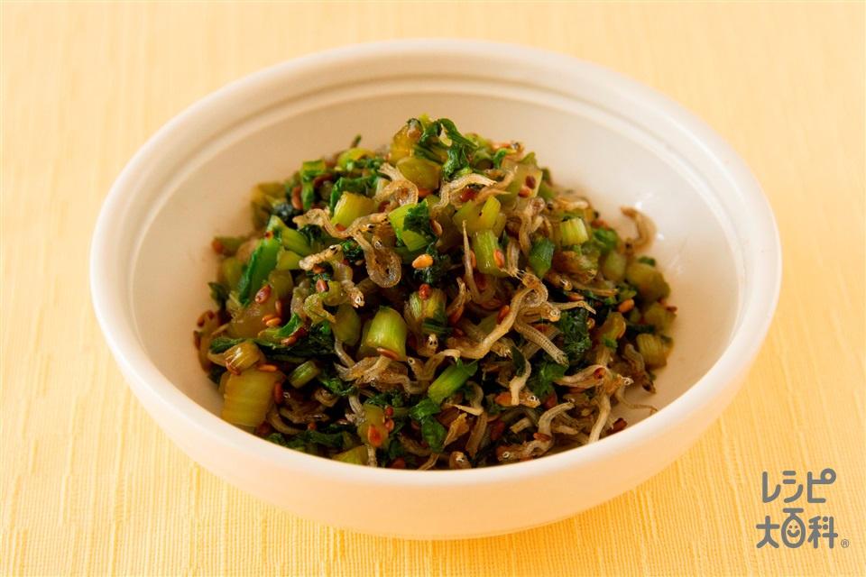 大根の葉とじゃこ炒め(大根の葉+ちりめんじゃこを使ったレシピ)