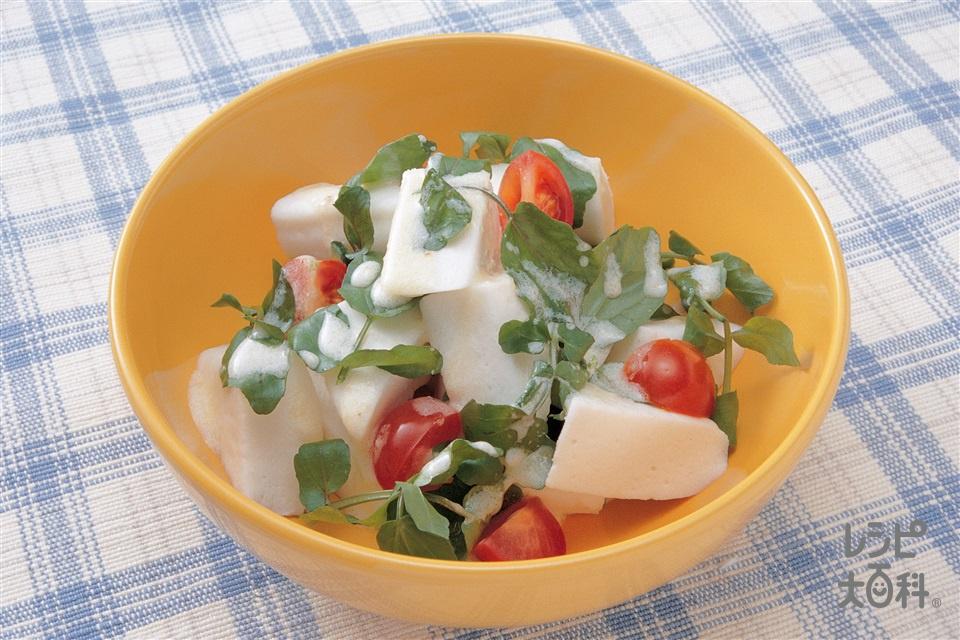 クレソンのヨーグルトサラダ(クレソン+はんぺんを使ったレシピ)