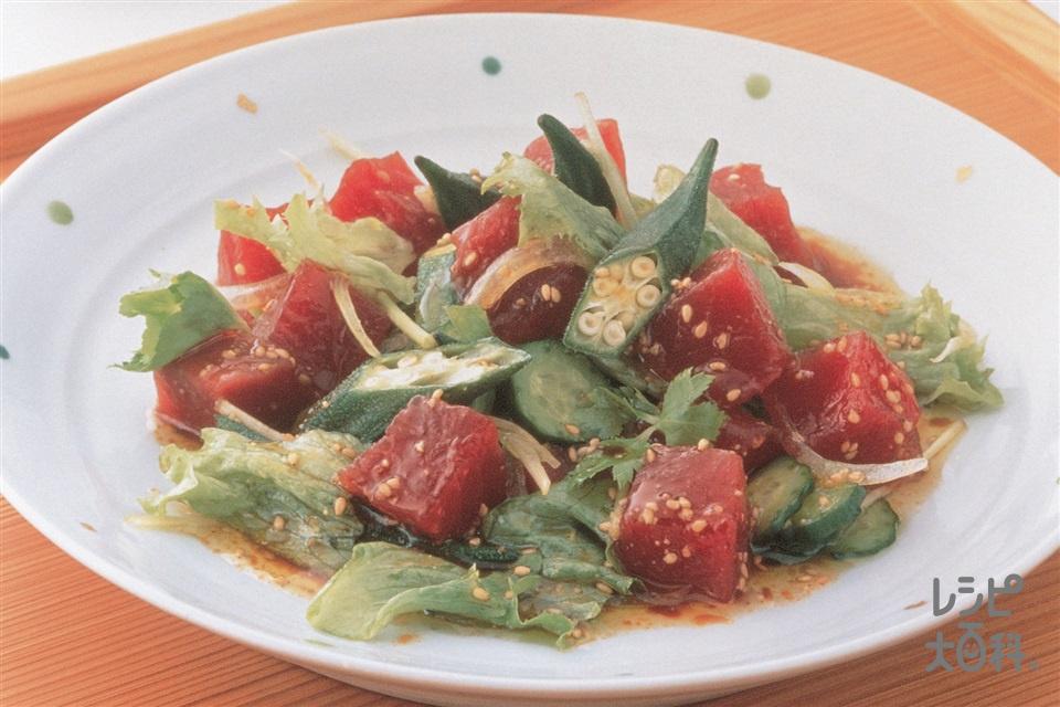 まぐろと色々野菜のあえサラダ(まぐろの赤身+レタスを使ったレシピ)