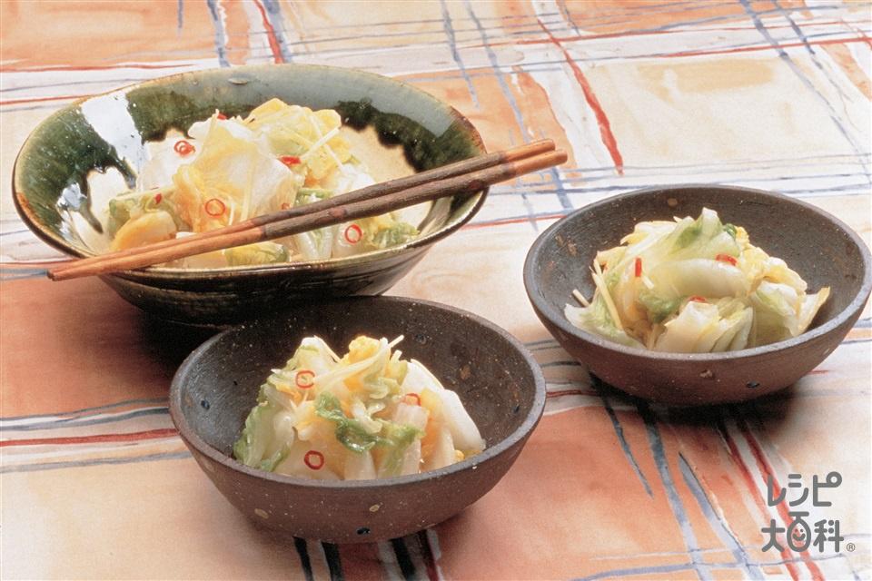 白菜の甘酢油漬け(白菜+しょうがを使ったレシピ)