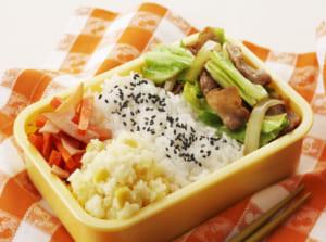 豚キャベツ炒め弁当