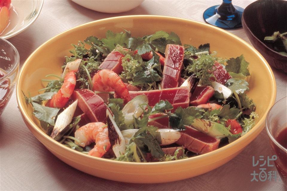 レアまぐろとえびのサラダ仕立て(まぐろ+えびを使ったレシピ)