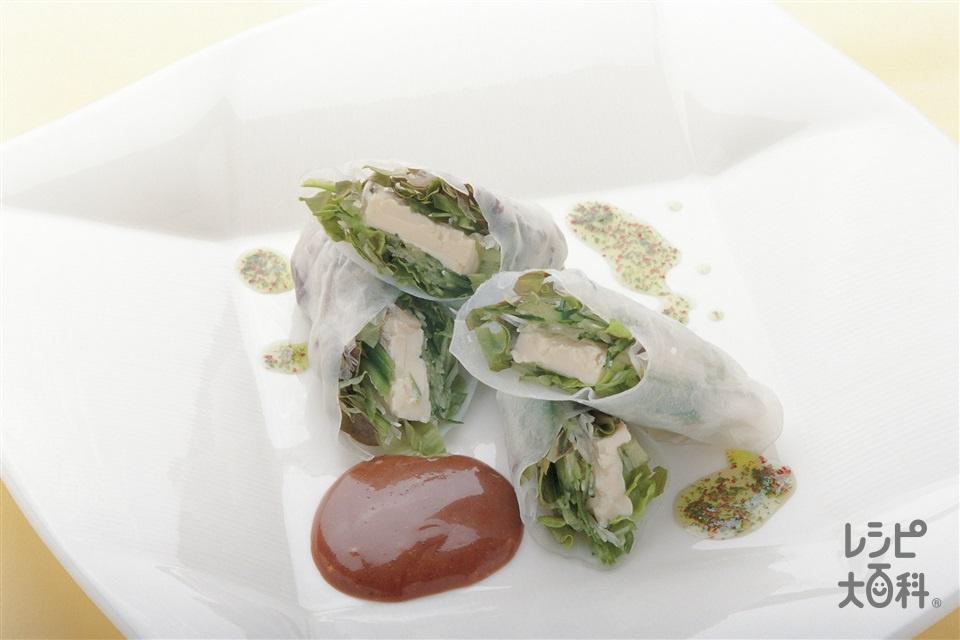 野菜たっぷり生春巻(サニーレタス+絹ごし豆腐を使ったレシピ)