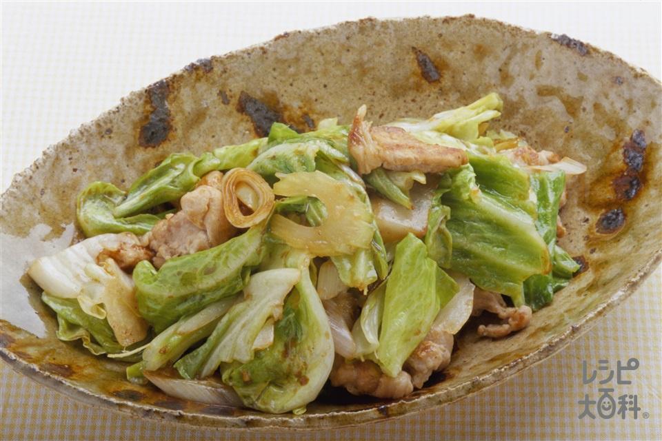 キャベツと豚肉の甜麺醤炒め(豚もも薄切り肉+キャベツを使ったレシピ)