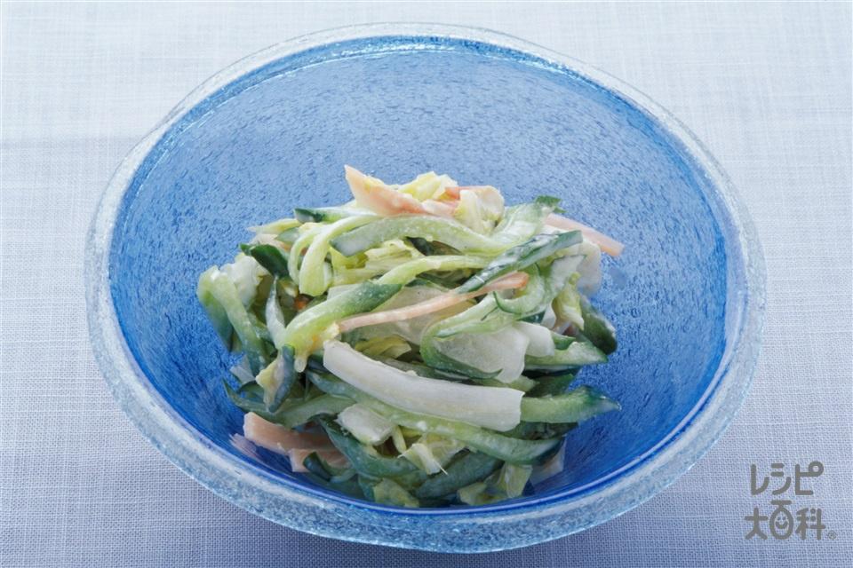 白菜のわさびマヨネーズサラダ(白菜+きゅうりを使ったレシピ)