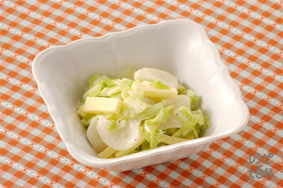 チーズとかぶ、キャベツのサラダ(かぶ+キャベツを使ったレシピ)