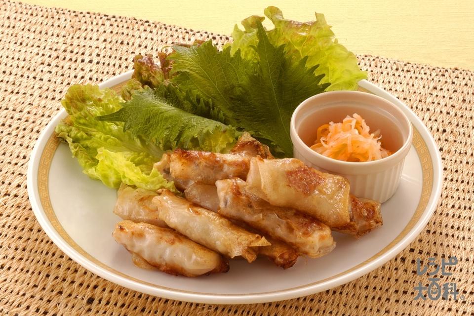 揚げ春巻(豚ひき肉+サニーレタスを使ったレシピ)