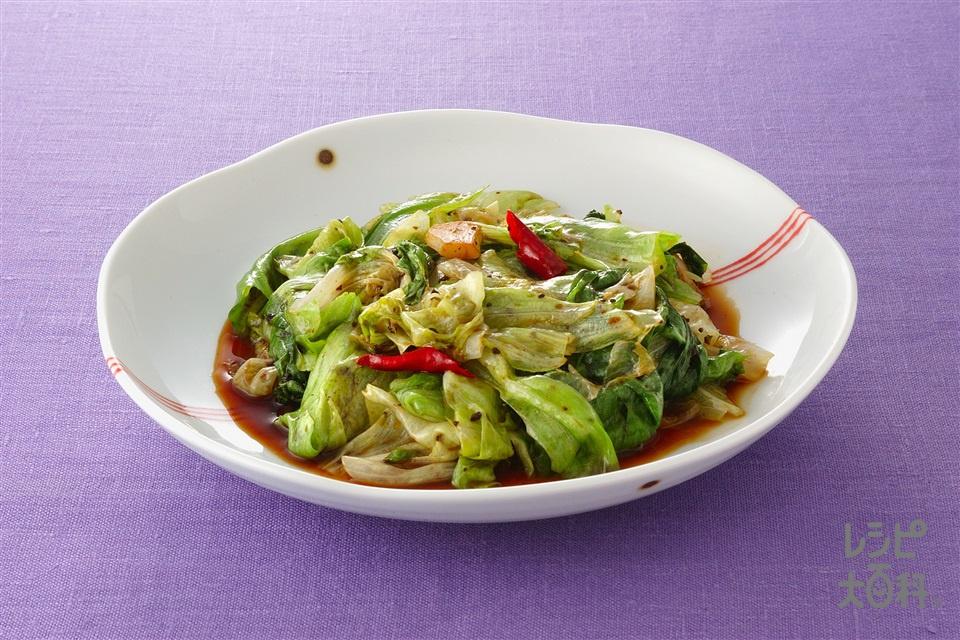 レタスの豆チ炒め(レタス+にんにくを使ったレシピ)