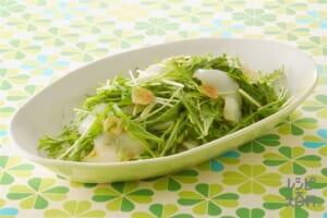 いかと水菜のサラダ