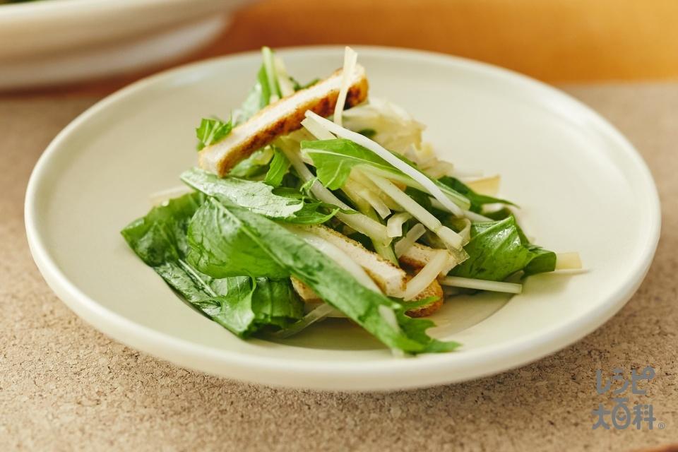 水菜と大根のサラダ(水菜+大根を使ったレシピ)