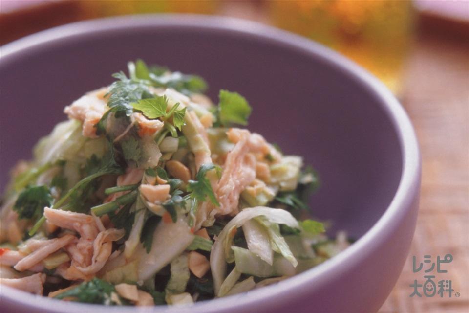 蒸し鶏とキャベツのエスニックサラダ(鶏むね肉+キャベツを使ったレシピ)