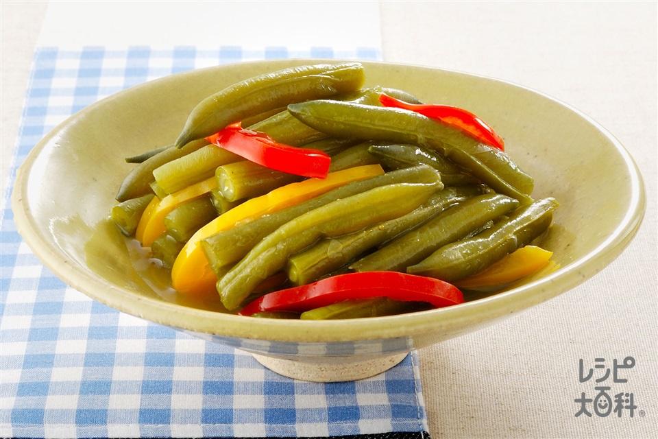 さやいんげんのクタッと煮(さやいんげん+パプリカ(赤)を使ったレシピ)