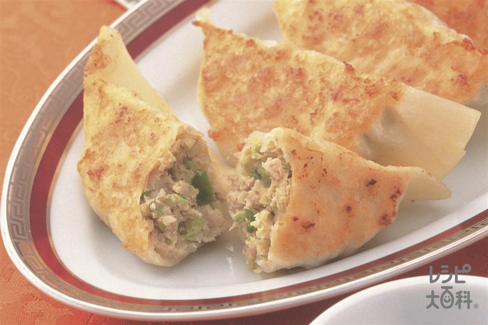 うま味アップ!手作りギョーザ(キャベツ+豚ひき肉を使ったレシピ)