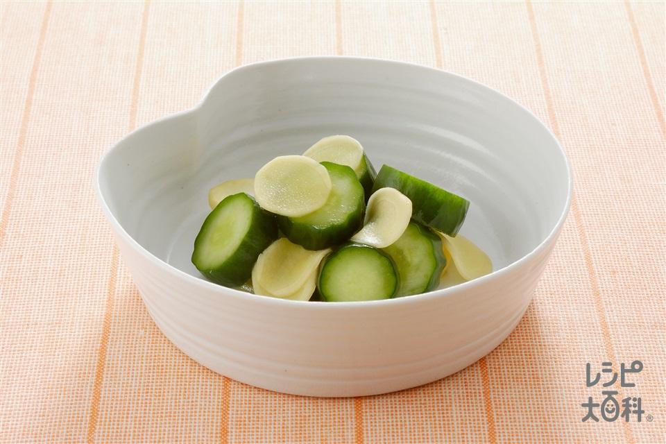きゅうりとしょうがのはちみつしょうゆ漬け(きゅうり+しょうがの薄切りを使ったレシピ)