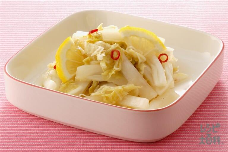 炒め白菜の甘酢漬け