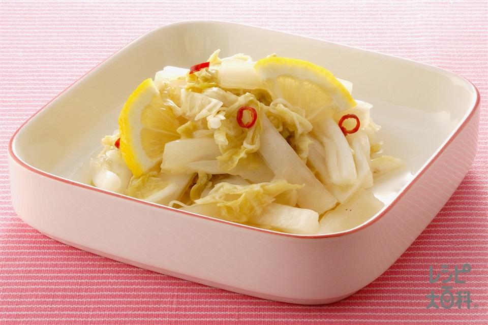 炒め白菜の甘酢漬け(白菜+レモンを使ったレシピ)