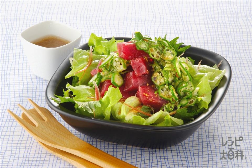 まぐろのネバネバかけサラダ(まぐろの赤身+レタスを使ったレシピ)