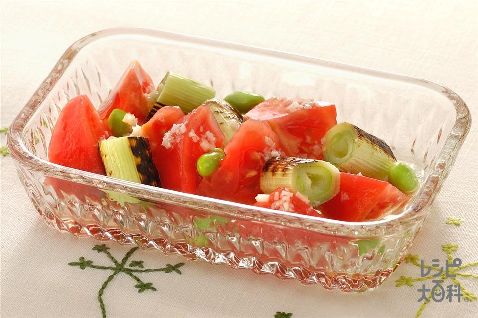 トマトとねぎのサラダ(トマト+ねぎを使ったレシピ)