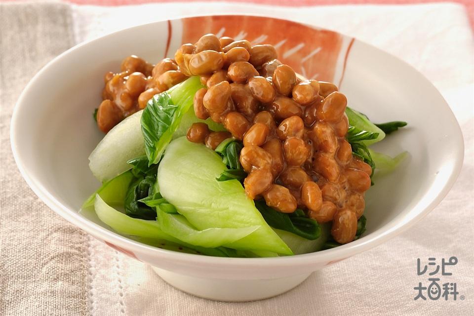 チンゲン菜の納豆じょうゆかけ(チンゲン菜+納豆を使ったレシピ)