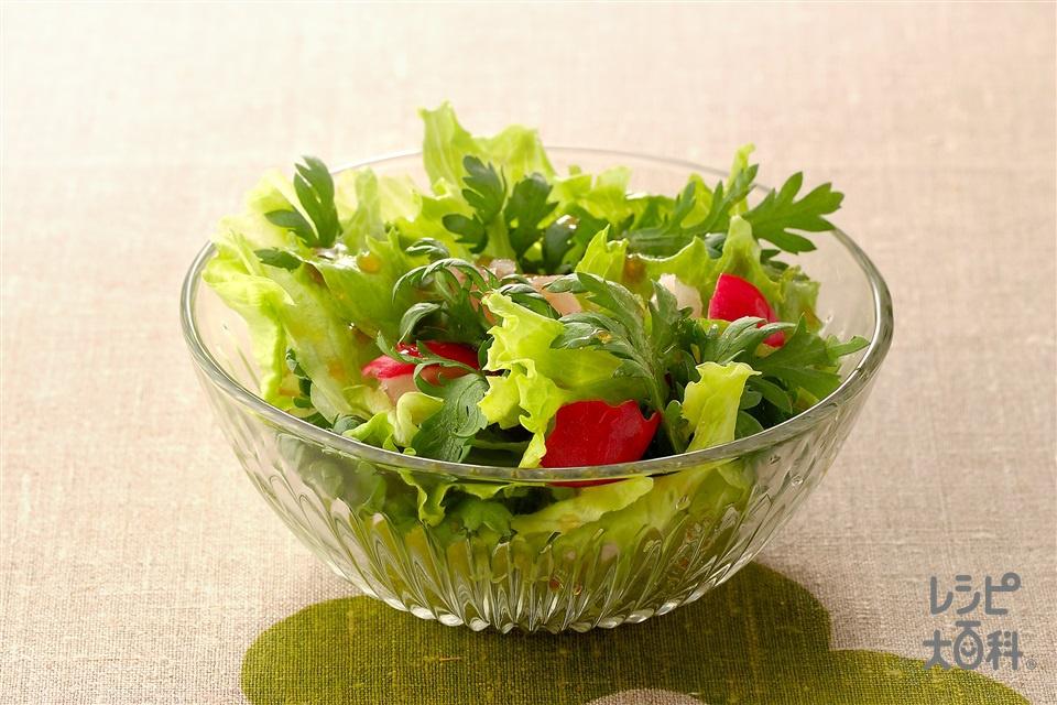 ラディッシュ レシピ サラダ