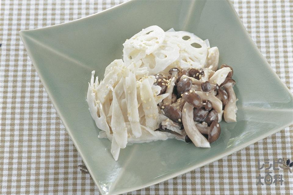 秋野菜の簡単ナムル(れんこん+ごぼうを使ったレシピ)