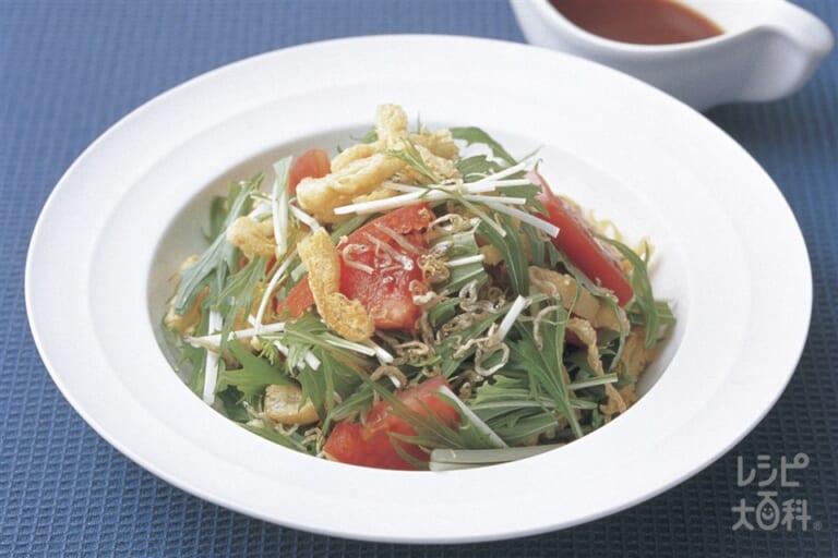 水菜のじゃこサラダ