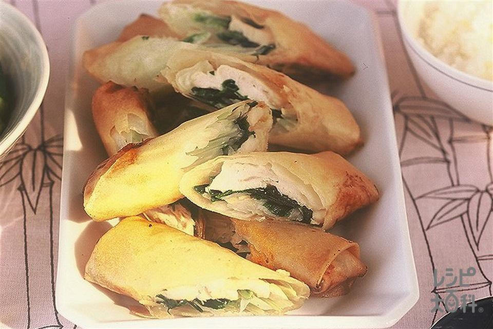 ささ身と野菜の春巻(鶏ささ身+セロリを使ったレシピ)