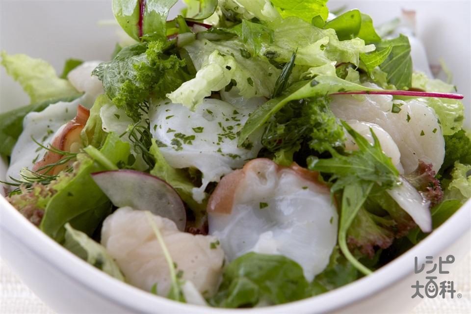 シーフードサラダ(生だこの足+帆立貝柱(刺身)を使ったレシピ)