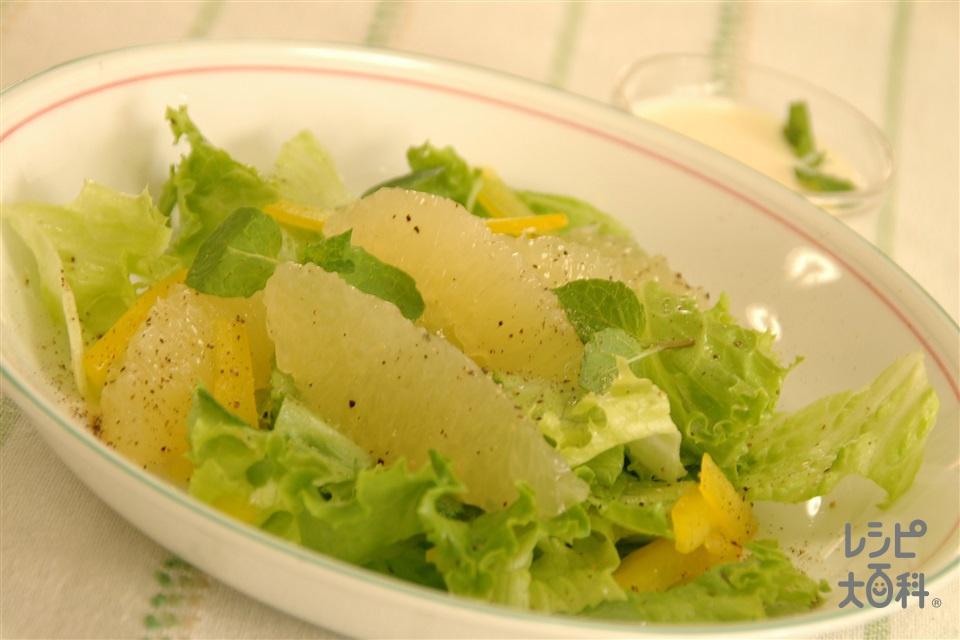 グレープフルーツとミントのサラダ(グレープフルーツ+リーフレタスを使ったレシピ)