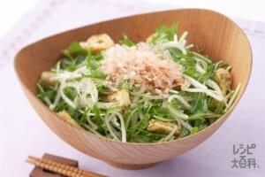 水菜と大根のアジシオサラダ