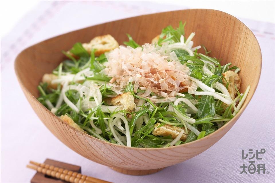 水菜と大根のアジシオサラダ(大根+水菜を使ったレシピ)