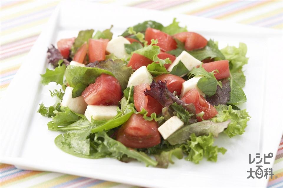 トマトとモッツァレラチーズのアジシオサラダ(トマト+モッツァレラチーズを使ったレシピ)