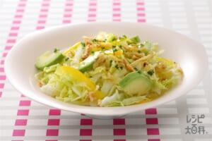 白菜のシャキシャキサラダ