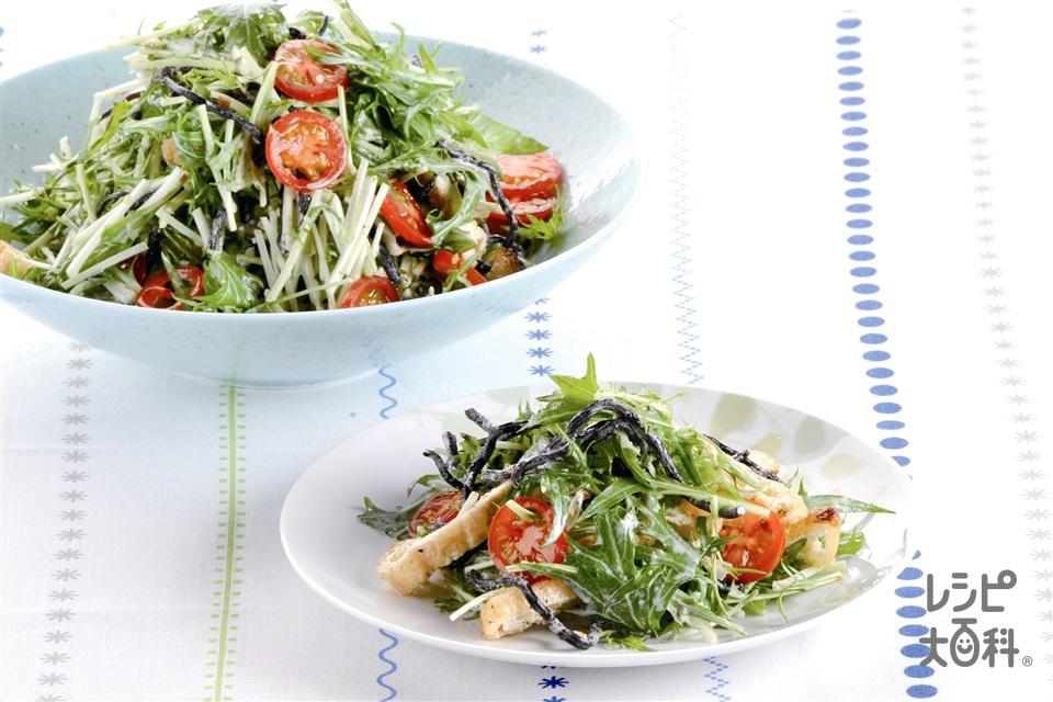 ひじきと水菜のサラダ(水菜+ミニトマトを使ったレシピ)