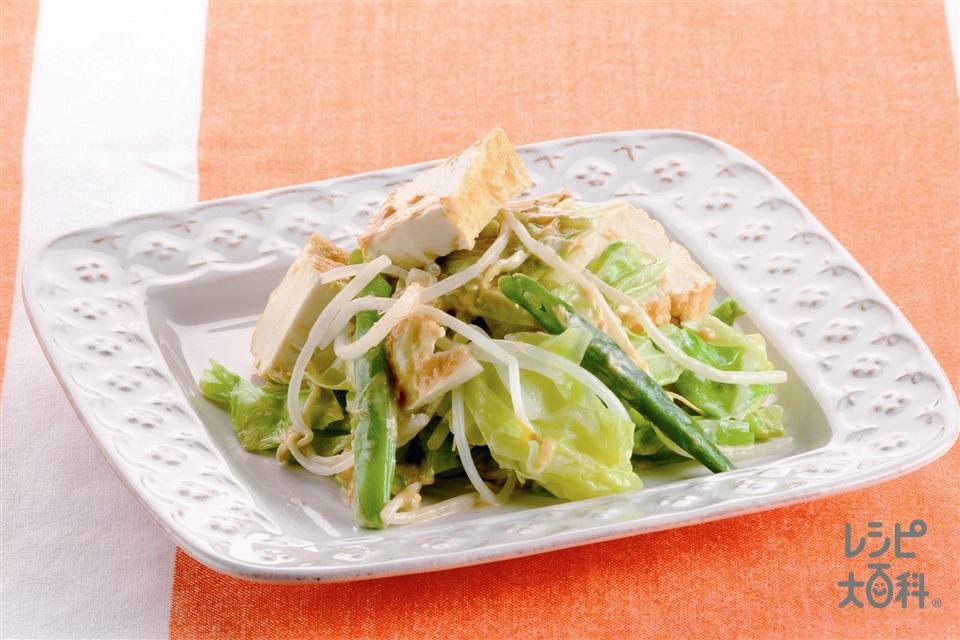 春キャベツのガドガド風サラダ  (キャベツ+もやしを使ったレシピ)