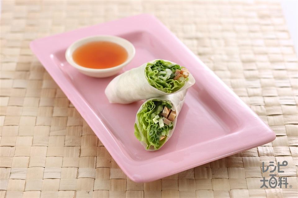 エスニック風野菜巻き(ライスペーパー+サニーレタスを使ったレシピ)