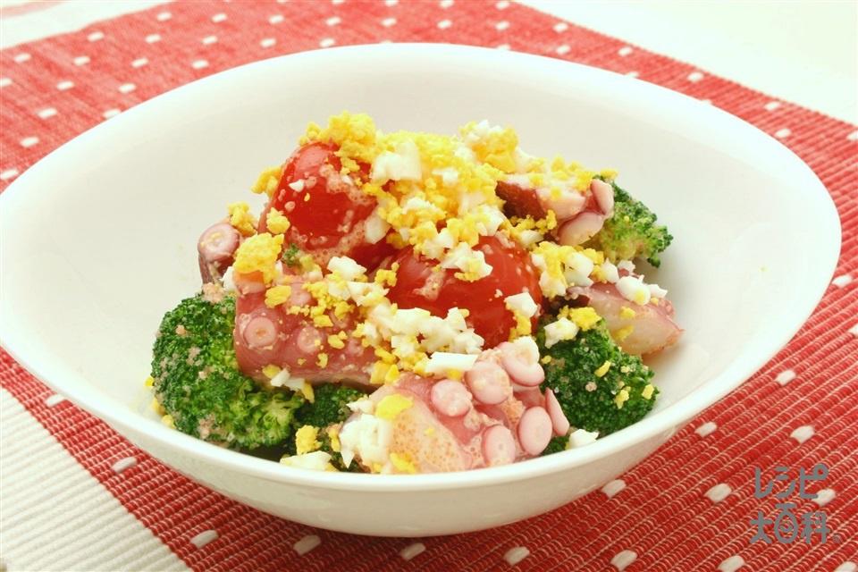 ブロッコリーと明太子のカラフルサラダ(ブロッコリー+ゆでだこを使ったレシピ)