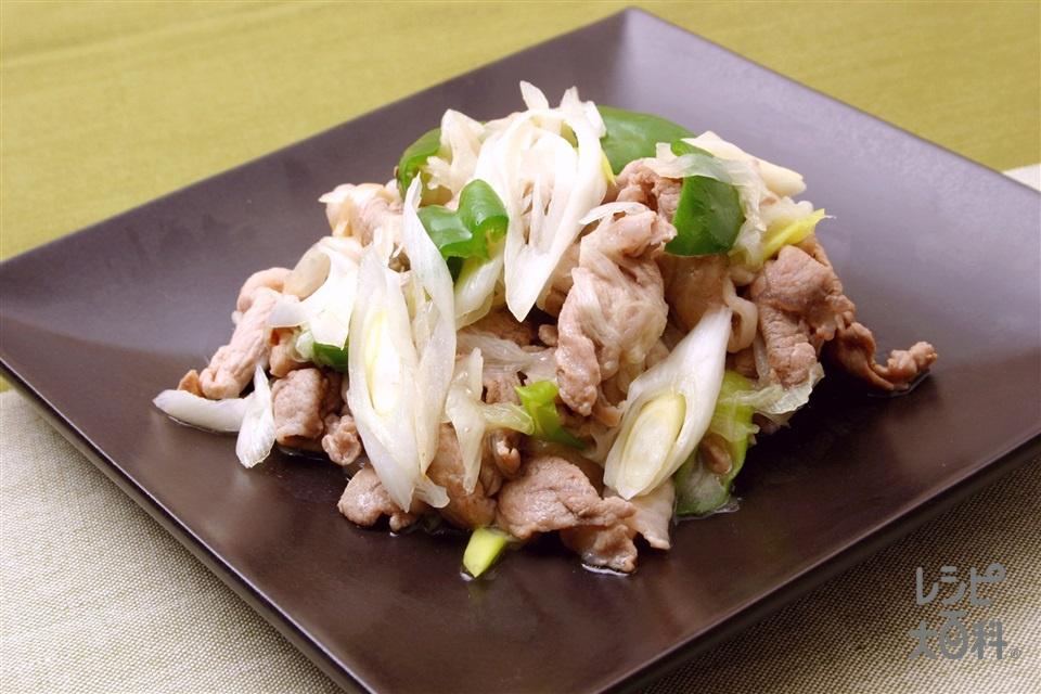 豚肉とねぎの塩炒め(豚薄切り肉+ピーマンを使ったレシピ)