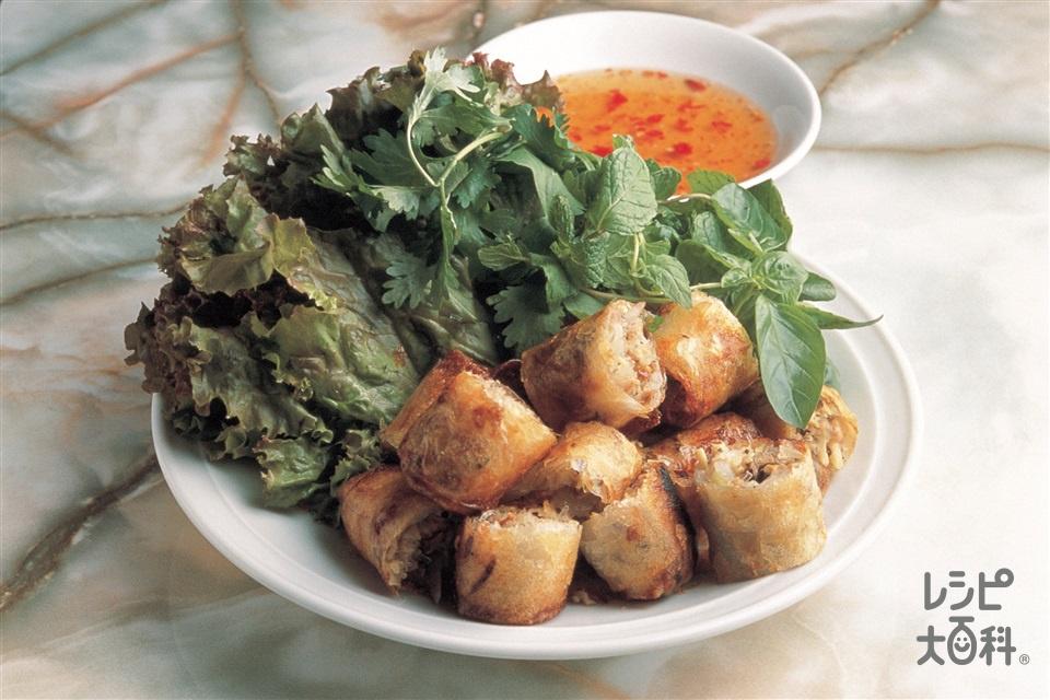 揚げ春巻き(豚ひき肉+もやしを使ったレシピ)
