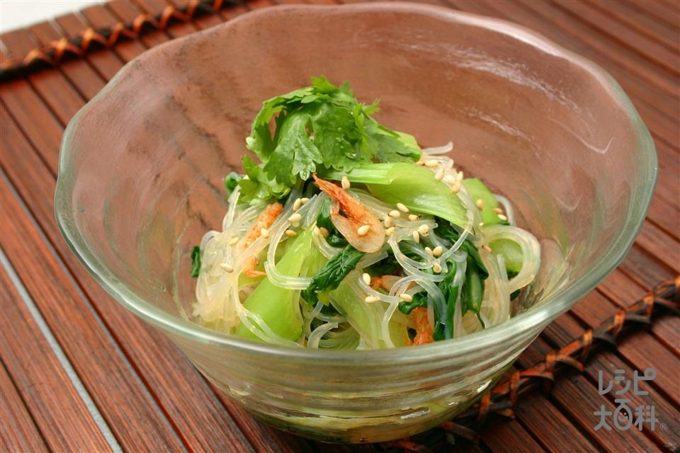チンゲン菜と春雨のエスニックサラダ