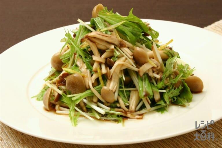 きのこと京菜のサラダ
