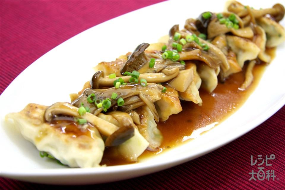 餃子のきのこあんかけ(豚ひき肉+キャベツを使ったレシピ)