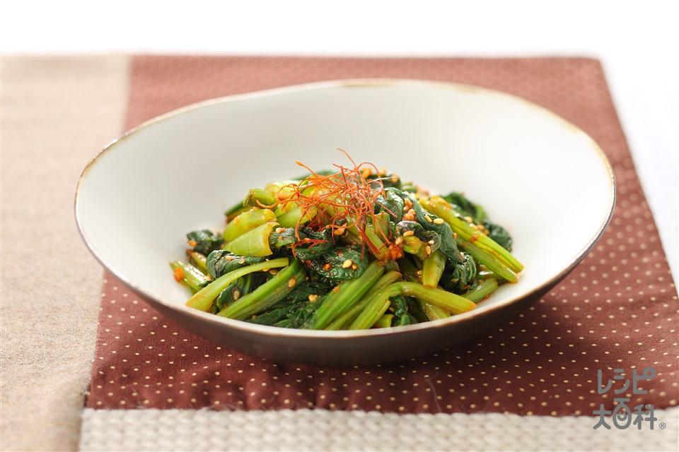 小松菜のコチュジャンナムル(小松菜+いり白ごまを使ったレシピ)