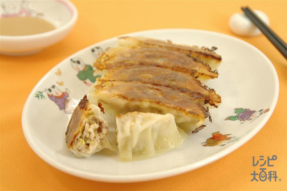 ぶりギョーザ(ぶり+白菜を使ったレシピ)