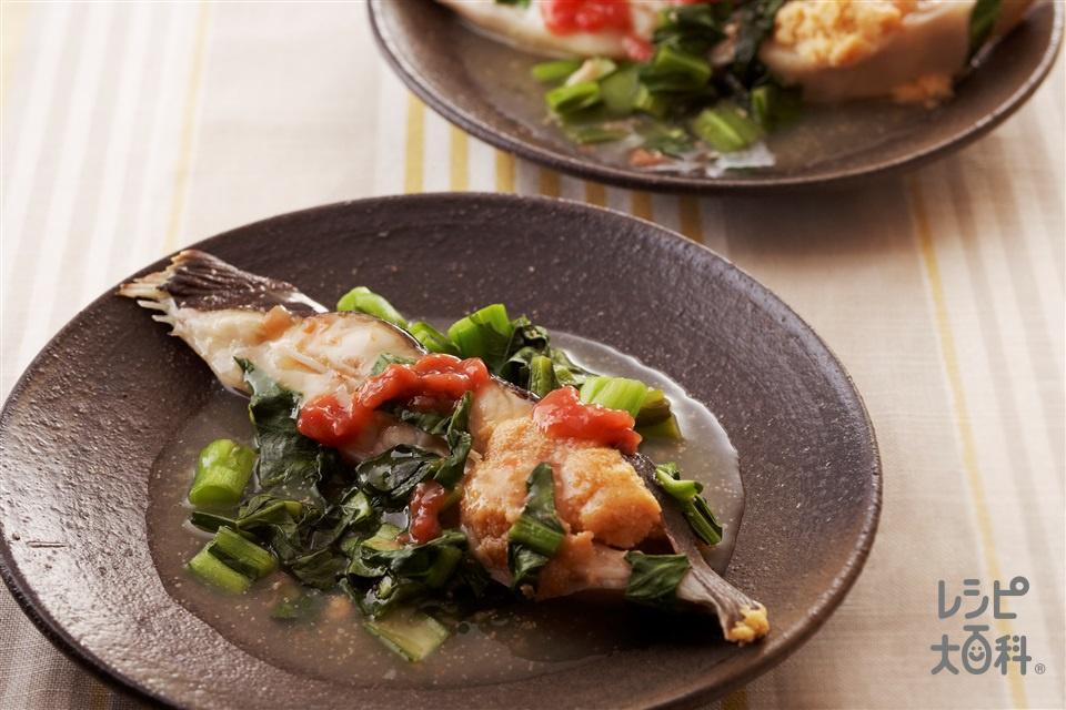 小松菜と鰈のだしうま煮(小松菜+かれい(切り身)を使ったレシピ)
