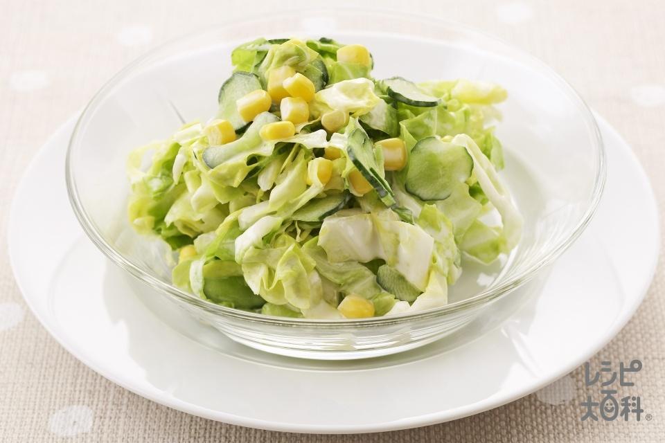 コールスローサラダ(キャベツ+きゅうりを使ったレシピ)