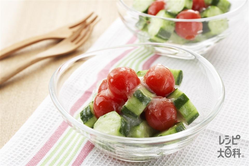 コロコロきゅうりとミニトマトのサラダ(きゅうり+ミニトマトを使ったレシピ)